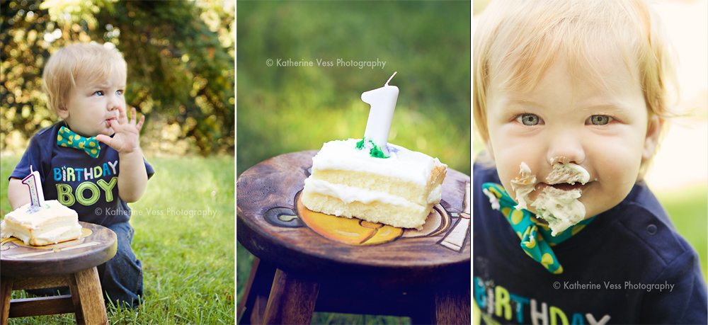 cake smash during 1 year old birthday session